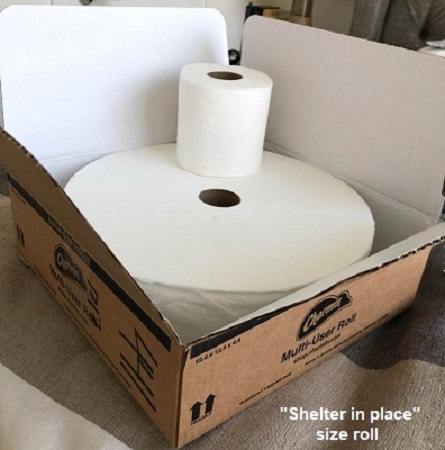 Name:  COVID_Big-roll-of-toilet-paper.jpg Views: 193 Size:  56.2 KB